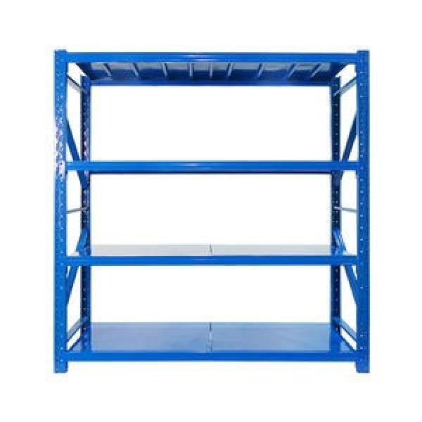 Industrial Cold Storage Warehouse Fifo Radio Shuttle Pallet Shelf